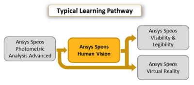 ansys-speos-human-vision.png