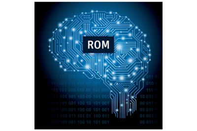 ROMs can predict an outcome when the input variables change.
